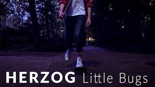 Herzog Lil Bugs (Lil Big Star)