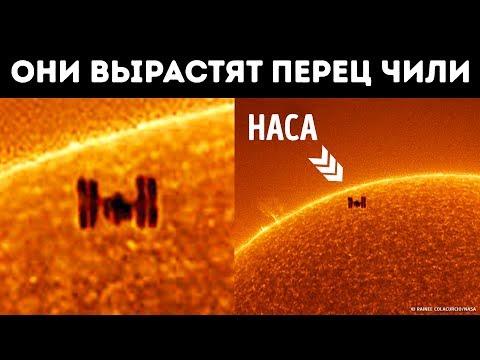 Уникальное фото МКС, пролетающей на фоне солнца