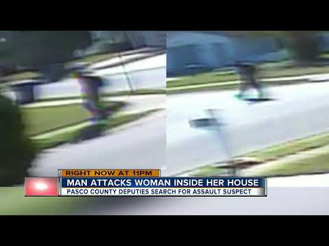 Pasco Sheriff's Office looking for man who invaded home, sexually assaulted 71-year-old