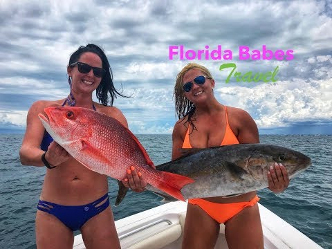 Deep Sea Fishing Largest Catch Madeira Beach Florida