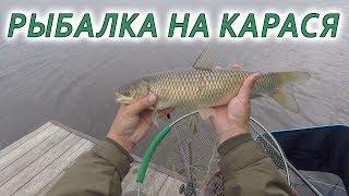 Рыбалка на мерного карася. Фидерная ловля