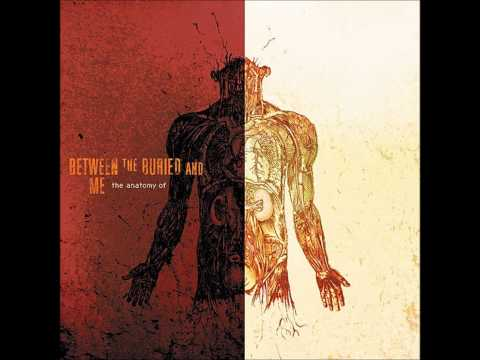 Between The Buried And Me - Us And Them (HQ - Pink Floyd Cover)