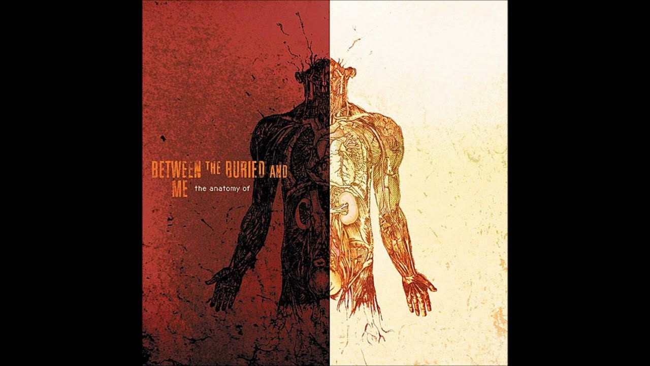 Between The Buried And Me Us And Them Hq Pink Floyd Cover