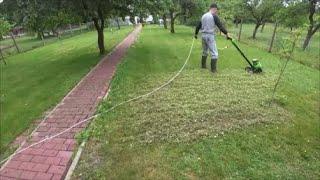 Садовая техника  для  дачи  и огорода  Делаем тест.