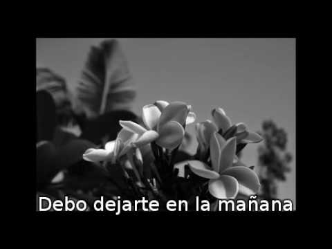 Madrugada - Honey Bee (Subtitulada)