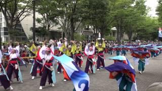 2013年8月24日(土)撮影 原宿表参道元氣祭スーパーよさこい2013.