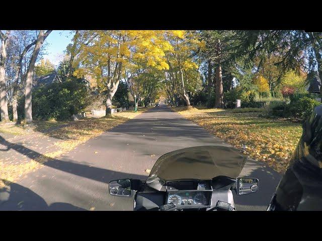 Autumn Colors: Uplands to Gordon Head, Victoria CANADA