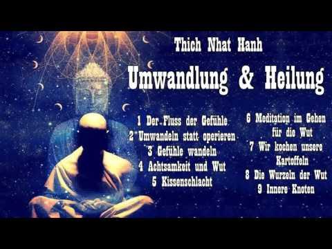 Umwandlung und Heilung - Über Angst, Wut und Achtsamkeit - Thich Nhat Hanh