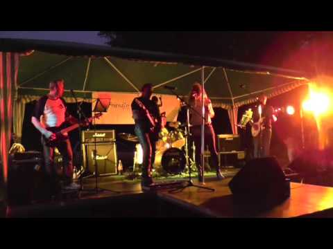 Nutbush City Limits Cover by Friendly Fire Band