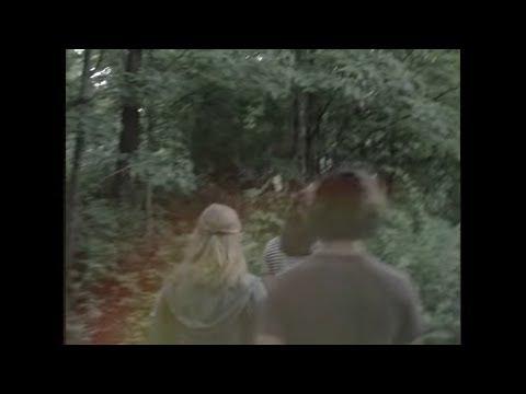 Lissie - Wild West (Twin Peaks version)