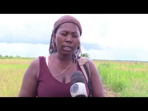 CRIMINALIDADE NA ZAMBÉZIA