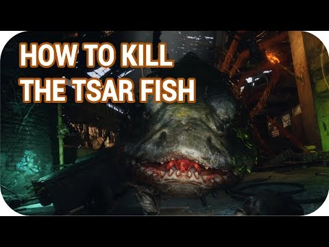 How To Kill The Tsar Fish In Metro Exodus Guide No Commentary