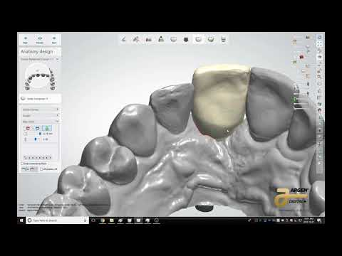 Durban Dental Quick Design