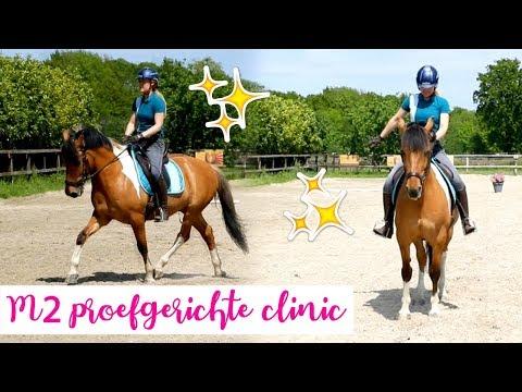 Onze eerste M2 wedstrijd Proefgerichte dressuur clinic + TIPS  felinehoi