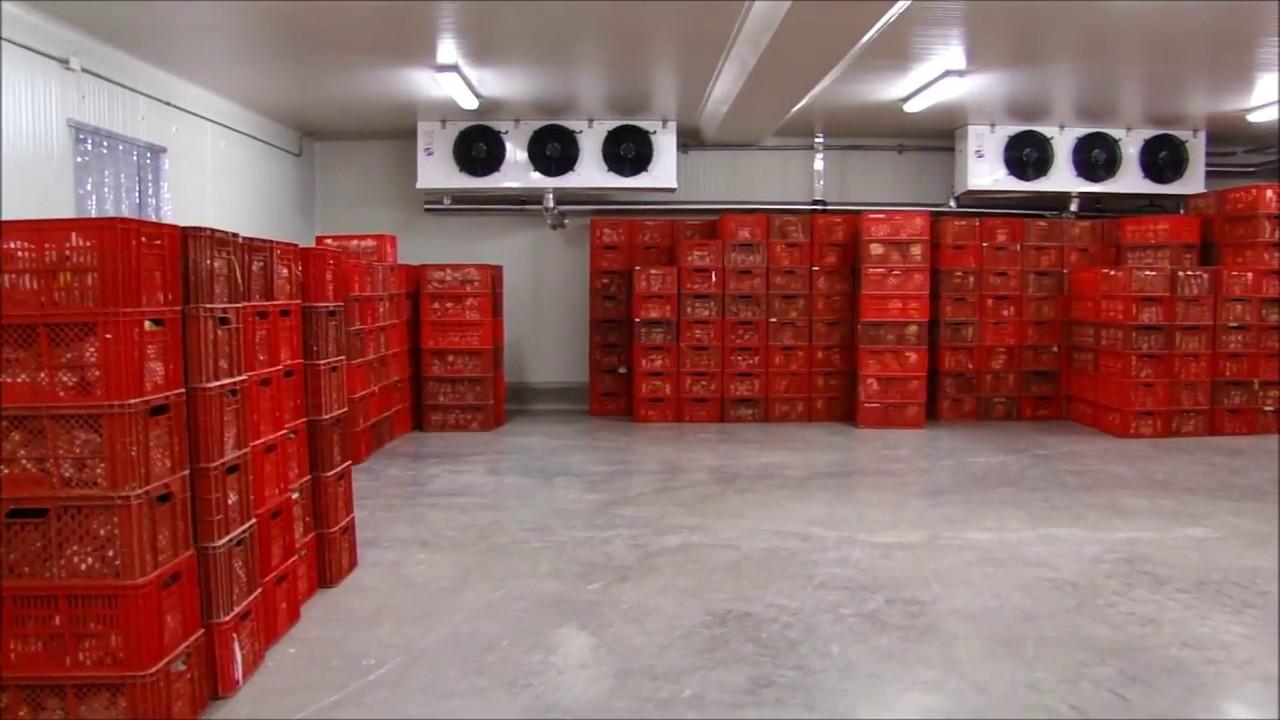 Refridcol cuarto frio y tuneles de congelacion proyecto - Cuarto frio cocina ...