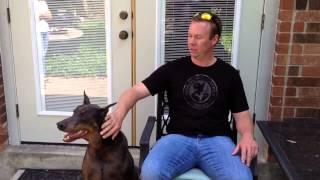 San Antonio, Texas Dog Training Success!