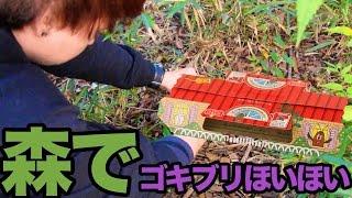 森でゴキブリホイホイで地球を守る!!  PDS thumbnail
