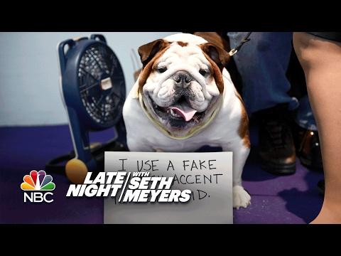 Extreme Dog-Shaming: Westminster Dog Show Edition