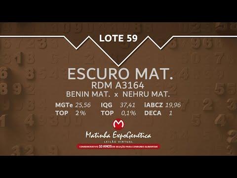 LOTE 59 MATINHA EXPOGENÉTICA 2021