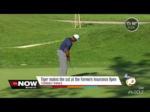 Tiger makes the cut at Torrey Pines