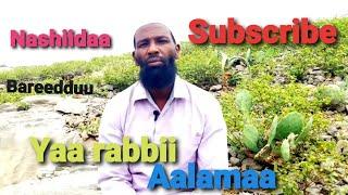 Download Lagu Abdoosh Aliyyii #Yaa_Rabbii  Nashiidaa bareedduu 2020 mp3