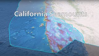 California Seamount Series - Episode 1: What is a Seamount