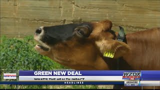 Green New Deal Health Impact