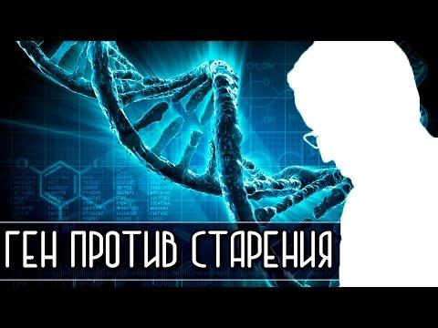 Наука и технологии России Наука и техника