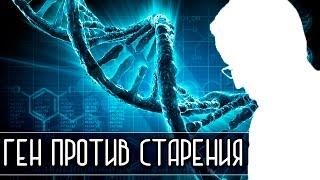 ГЕН ПРОТИВ СТАРЕНИЯ [Новости науки и технологий]