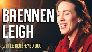 """Brennen Leigh """"Little Blue-Eyed Dog"""""""