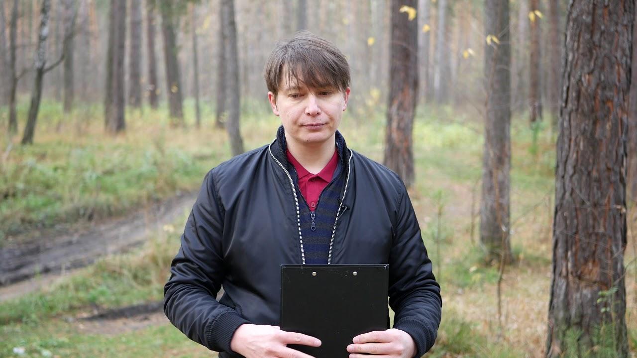 ОВЕН 10 событие 29 ноября Гороскоп