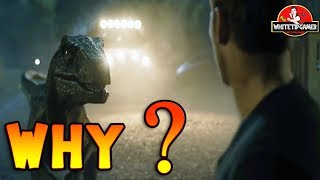 Why Did Blue Reject Owen? Jurassic World Fallen Kingdom Theory