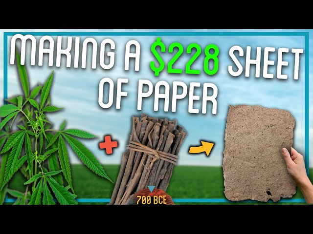 Making Paper Out Of Trees (100% From Scratch)
