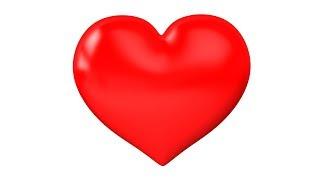 Kalp Anatomisi(Her şey dahil)