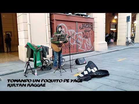 Musicista Di Strada A Bologna - Busker Musician In Bologna