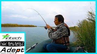 Поехал ловить окуня а поймал Рыбалка на озере Чаны Ловля судака на джиг с лодки