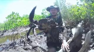 bắt cua khổng lồ ở nước ngoài ở việt nam thì xác định :3
