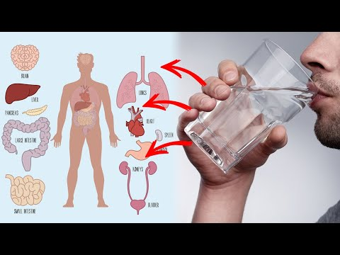 Why is it Important To Drink Warm Water In The Morning.? | Dr. CL Venkata Rao