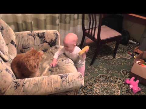 любовь ребнка к коту