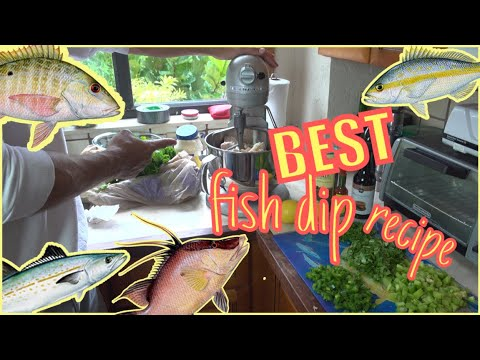 Make The BEST FISH DIP Recipe! Catch N Cook