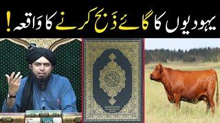 Yahoodiyon ( Jews ) ka Gaaye ( Cow ) Zibah karne ka Waqia ! ! ! ( By Engineer Muhammad Ali Mirza )