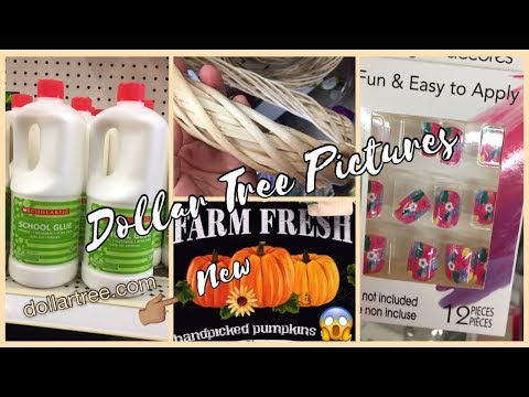 Dollar Tree Pictures | Fall Items 😱