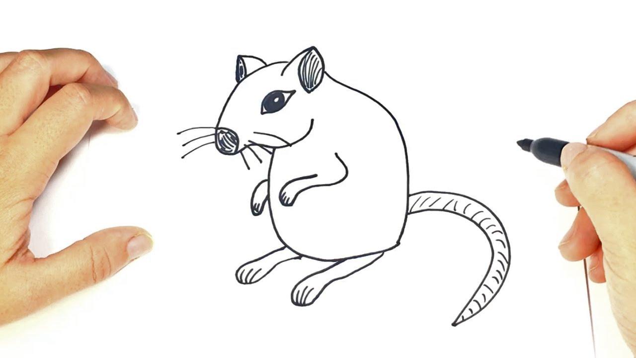 Encantador Jerbo Para Colorear Elaboración - Dibujos de Animales ...