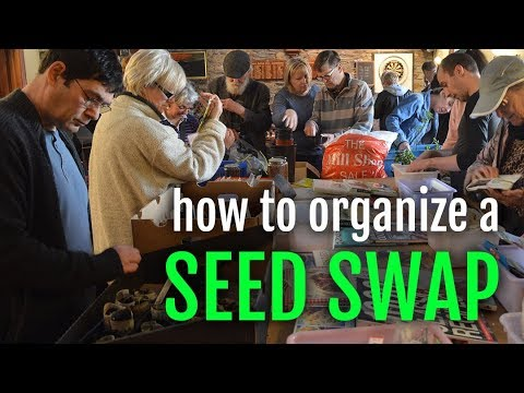 How to organize a Seed Swap + footage from the Isle of Man Seed and Plant Share