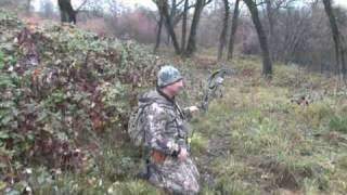 Wild Boar hunting in Northern CA #1