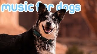 Music for Dogs! 11 Hours of Relaxing ASMR Music to Calm Your Dog! 2019