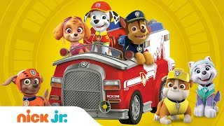 Ultimate Rescue Compilation w/ PAW Patrol | Nick Jr.