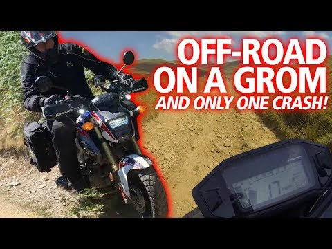 Off-road on the MSX125  | Testing and crashing my Honda Africa Grom review