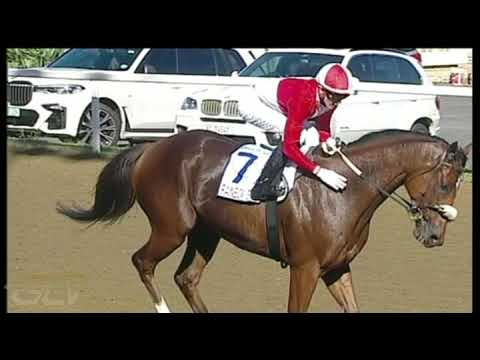Download 20210502 Hollywoodbets Greyville Race 5 won by RAINBOW BRIDGE