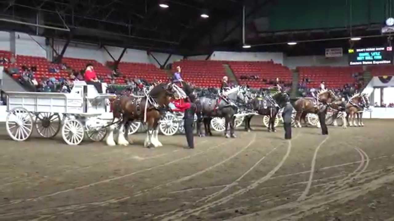 Big E Horse Show '15 Vignette - Feel The Draft